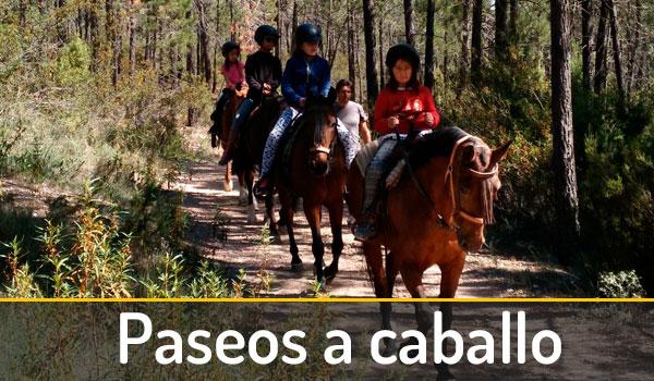 caballos-talayuelas