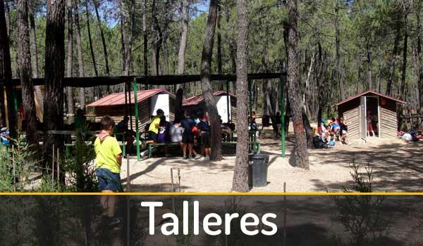 talleres-campamento-talayuelas