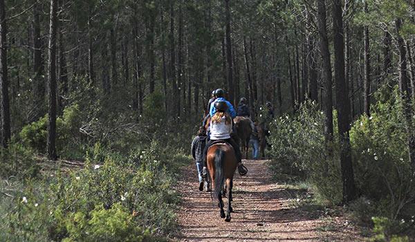 paseos-a-caballo-2