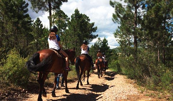 paseos-a-caballo-7